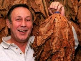The picture of Chris holding up his tobacco leaves as published in The Express